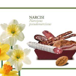 Pacco Regalo Pasqua Narcisi